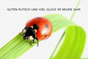 guten-rutsch-und-viel-glck-2011